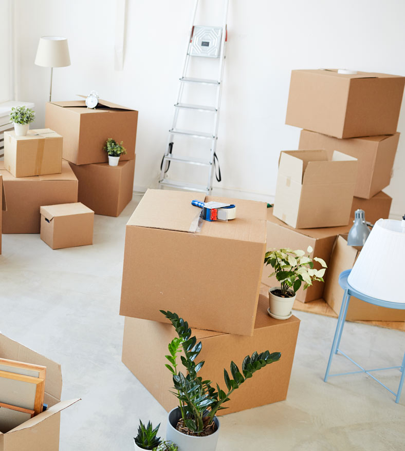emménagement-logement-social-2